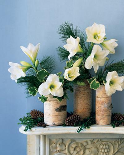 """Зимний коктейль: композиции из растений в сочетании  """"зеленый + белый."""
