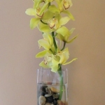wonderful-orchids-ideas2-15.jpg