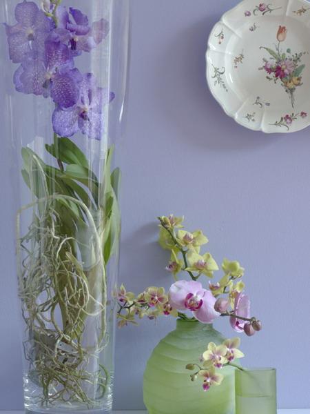 Мастер-класс.  Композиция из орхидей.  Александр Мельников.