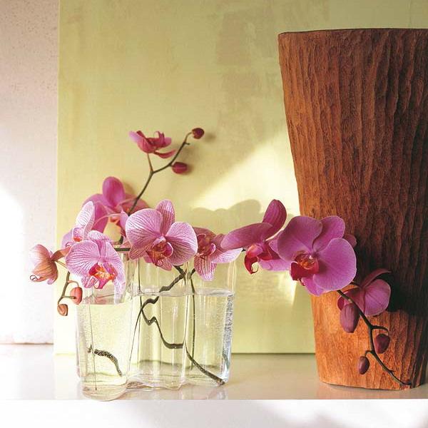Орхидеи декор 64