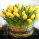 yellow-flowers-centerpiece-ideas-solo3.jpg