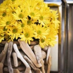 yellow-flowers-centerpiece-ideas-eco3.jpg