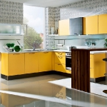 yellow-kitchen-combo1-5.jpg