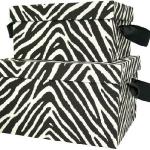 zebra-print-interior-details3-2.jpg
