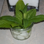 zen-esprit-table-setting2-5.jpg