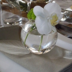 zen-esprit-table-setting3-4.jpg