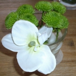 zen-esprit-table-setting3-5.jpg